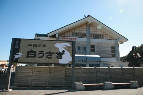 白うさぎに会えるかも??鳥取県