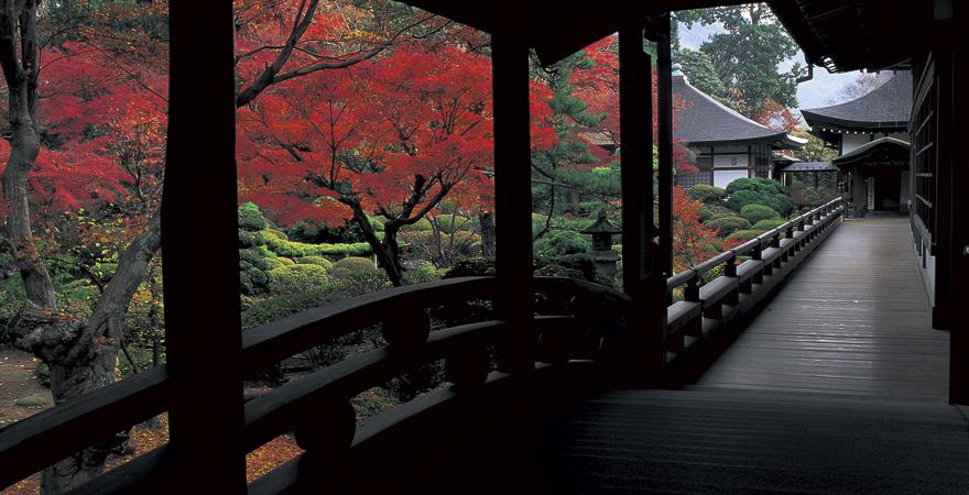 庭園もすばらしい武田信玄ゆかりの寺院 「道の駅 甲斐大和」
