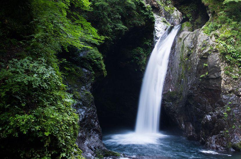 徳島で大自然の絶景を楽しめる旅 「道の駅 鷲の里」