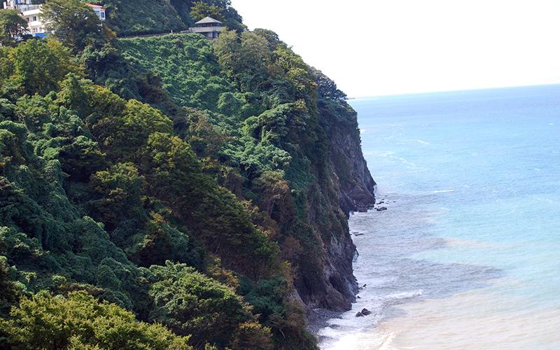 断崖×日本海の絶景を望む 「道の駅 親不知ピアパーク」