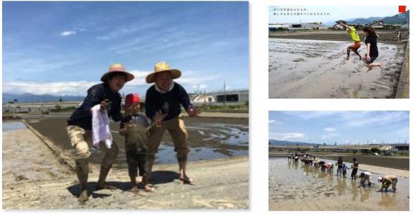 日本の田舎を代表する日本酒を一からつくろう! 親子で楽しめる農業体験イベント。